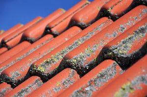 Critic Under - Roof Restoration Brisbane